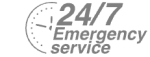 24/7 Emergency Service Pest Control in West Horsley, East Horsley, Effingham, KT24. Call Now! 020 8166 9746
