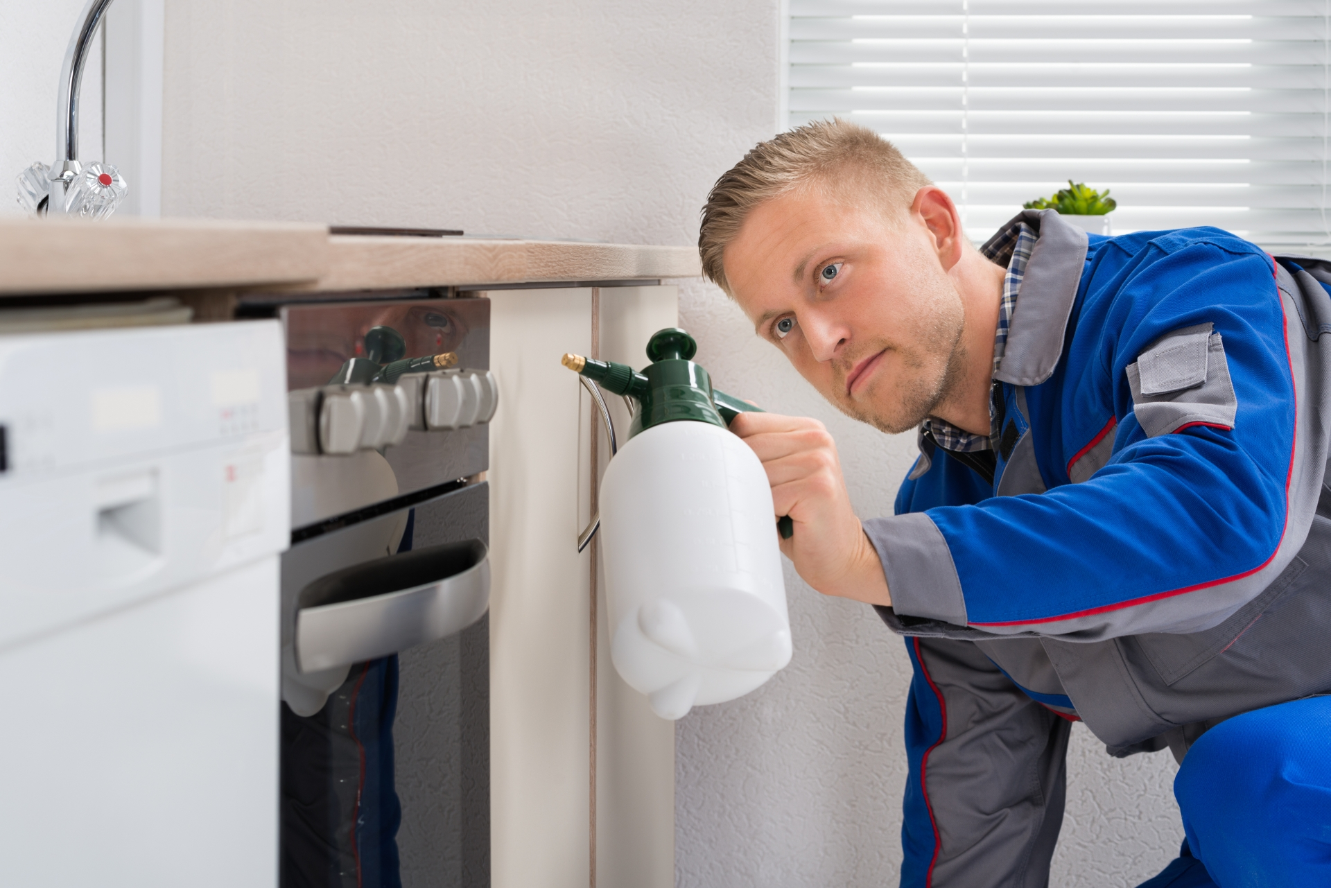 Pest Inspection, Pest Control in West Horsley, East Horsley, Effingham, KT24. Call Now 020 8166 9746